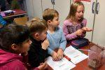 UrselUni: Das große Krabbeln 2.0